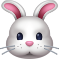 Rabbit Face on Facebook 4.0
