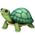 Turtle on Facebook 4.0