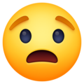 Worried Face on Facebook 4.0
