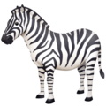 Zebra on Facebook 4.0