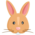 Rabbit Face on Messenger 1.0