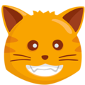 Grinning Cat Face on Messenger 1.0