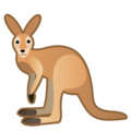 Kangaroo on Google Android 9.0