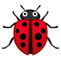 Lady Beetle on Google Android 9.0