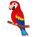 Parrot on Google Android 9.0
