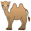Two-Hump Camel on Google Android 10.0