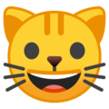 Cat Face on Google Android 10.0