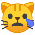 Crying Cat Face on Google Android 10.0