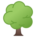 Deciduous Tree on Google Android 10.0
