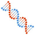 DNA on Google Android 10.0