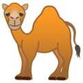 Camel on Google Android 10.0