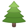 Evergreen Tree on Google Android 10.0