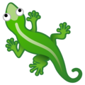Lizard on Google Android 10.0