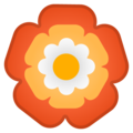 Rosette on Google Android 10.0
