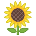 Sunflower on Google Android 10.0