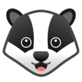 Badger on Google Android 10.0 March 2020 Feature Drop