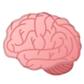 Brain on Google Android 10.0 March 2020 Feature Drop