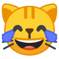 Cat with Tears of Joy on Google Android 10.0 March 2020 Feature Drop