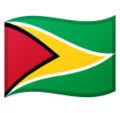 Flag: Guyana on Google Android 10.0 March 2020 Feature Drop