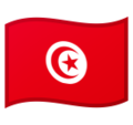 Flag: Tunisia on Google Android 10.0 March 2020 Feature Drop