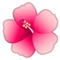 Hibiscus on Google Android 10.0 March 2020 Feature Drop