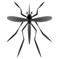 Mosquito on Google Android 10.0 March 2020 Feature Drop