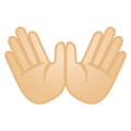 Open Hands: Light Skin Tone on Google Android 10.0 March 2020 Feature Drop