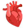 Anatomical Heart on Google Android 11.0 December 2020 Feature Drop