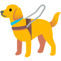 Guide Dog on Google Android 11.0 December 2020 Feature Drop