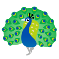 Peacock on Google Android 11.0 December 2020 Feature Drop
