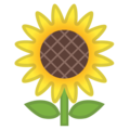 Sunflower on Google Android 11.0 December 2020 Feature Drop