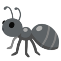 Ant on Google Android 12.0