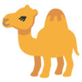 Camel on Google Android 12.0