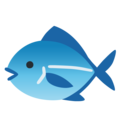 Fish on Google Android 12.0