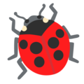 Lady Beetle on Google Android 12.0