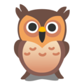 Owl on Google Android 12.0