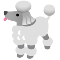 Poodle on Google Android 12.0