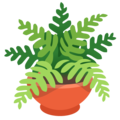 Potted Plant on Google Android 12.0