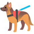 Service Dog on Google Android 12.0
