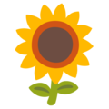 Sunflower on Google Android 12.0