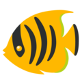 Tropical Fish on Google Android 12.0
