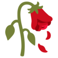 Wilted Flower on Google Android 12.0
