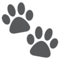 Paw Prints on HTC Sense 7
