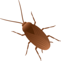 Cockroach on JoyPixels 6.0