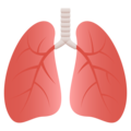 Lungs on JoyPixels 6.0