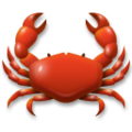 Crab on LG G5