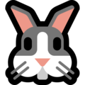 Rabbit Face on Microsoft Windows 10 October 2018 Update