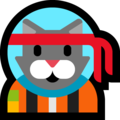 Astro Cat on Microsoft Windows 10 May 2019 Update
