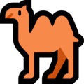 Two-Hump Camel on Microsoft Windows 10 May 2019 Update