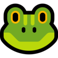 Frog Face on Microsoft Windows 10 May 2019 Update